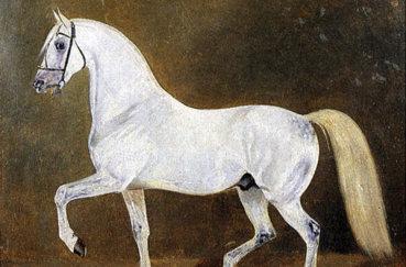 Сметанка - прародитель породы