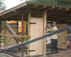 Процесс строительства деревянного птичника