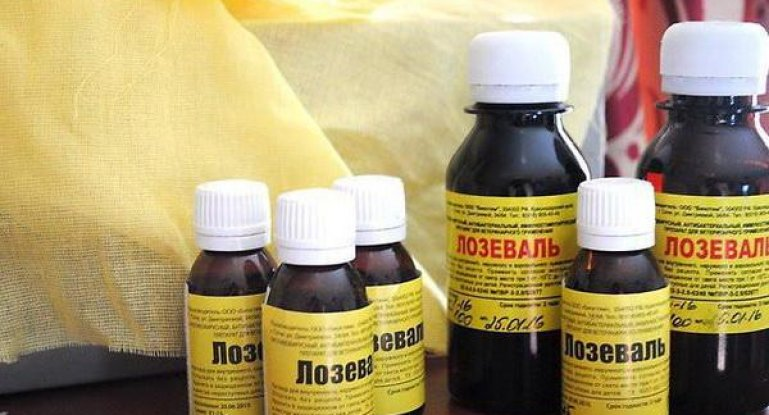 Доза прививки ньюкасла курам