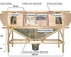 Схема клетки Михайлова