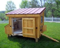 Дом для кур на участке
