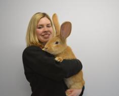 Хозяйка держит своего кролика