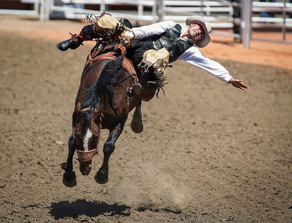 Конь пытается сбросить всадника
