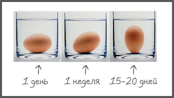 Три стакана с водой и яйцами