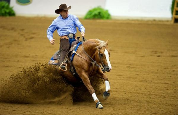 Конь тормозит в песке