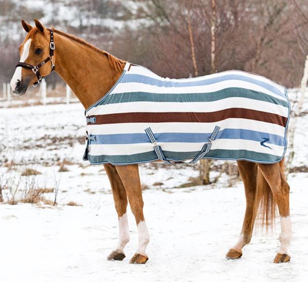Попона на лошади