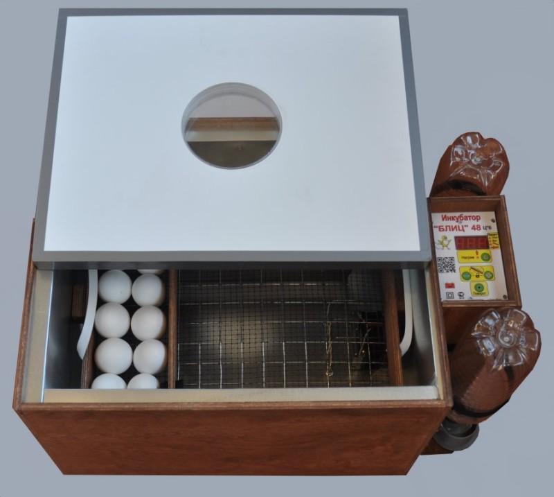 Инкубатор с яйцами внутри