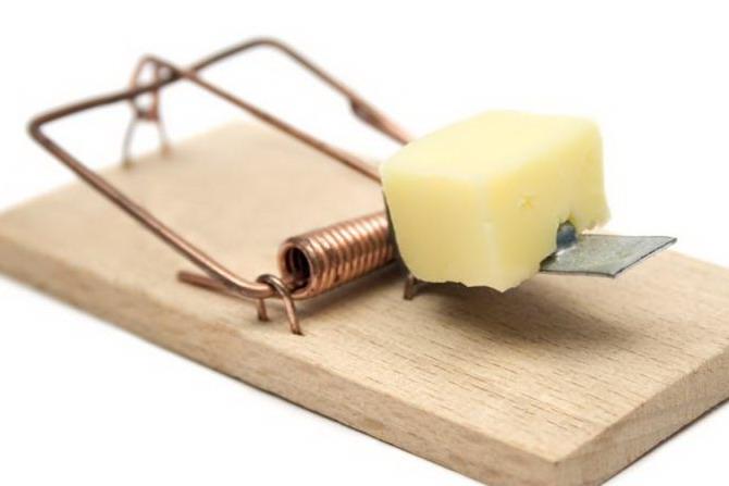 Деревянная мышеловка с сыром