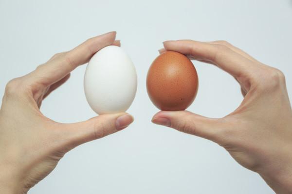 Белое и коричневое яйцо в руках