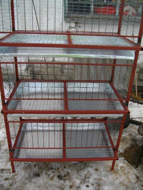 Конструкция для содержания домашних кур