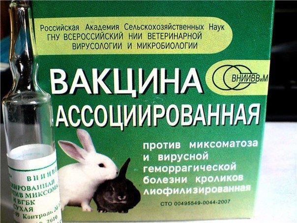 Вакцина от болезни