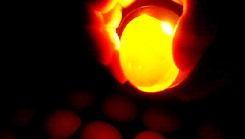 Просмотр яйца на 7 день инкубации
