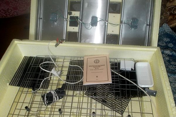 Инкубатор «Золушка» на 98 яиц крупный план
