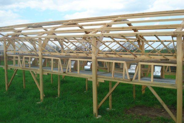 Процесс строительства шеда