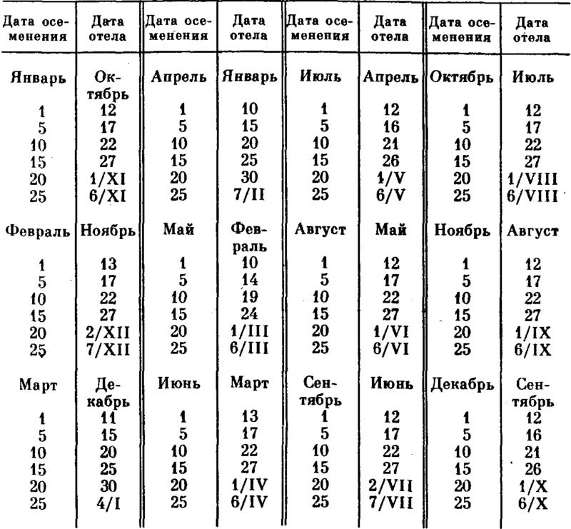 Календарь стельности коровы