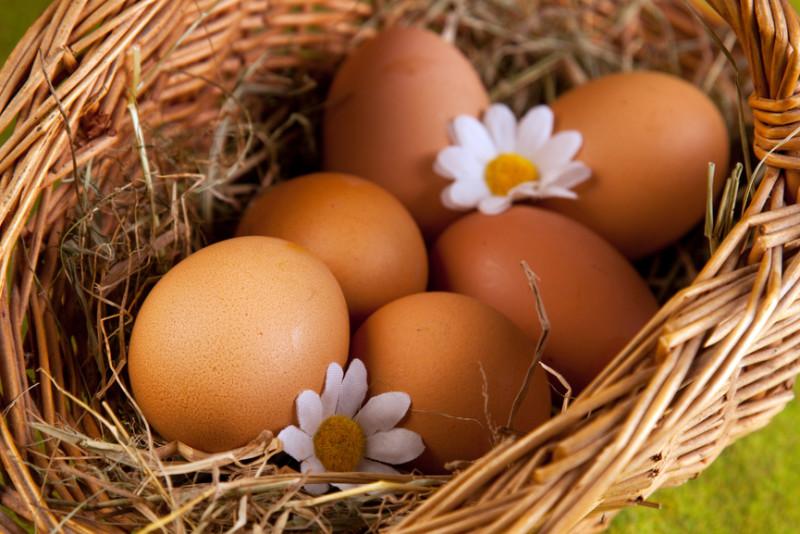 Куриные яйца в корзине с ромашками