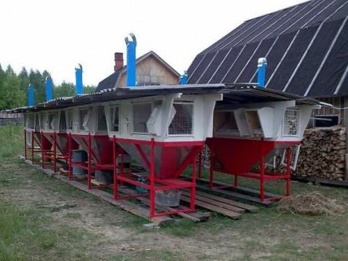 Мини фермы по Михайлову