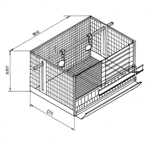 Пример секции для 2-3 кур