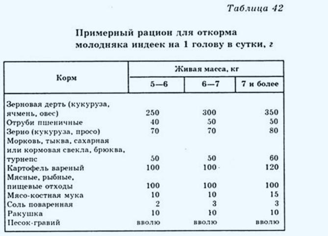 Таблица составления рациона для индюков в зависимости от их веса