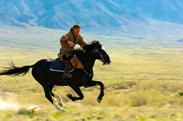 Джигит на адаевском коне