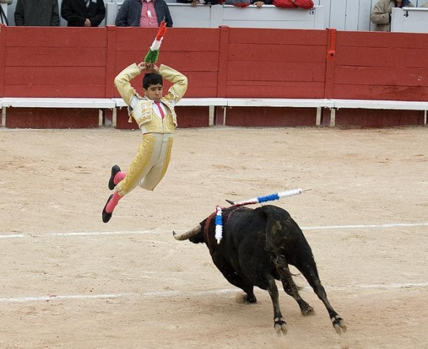 Тореро и бык на арене