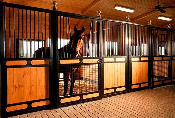 Лошадь в деннике
