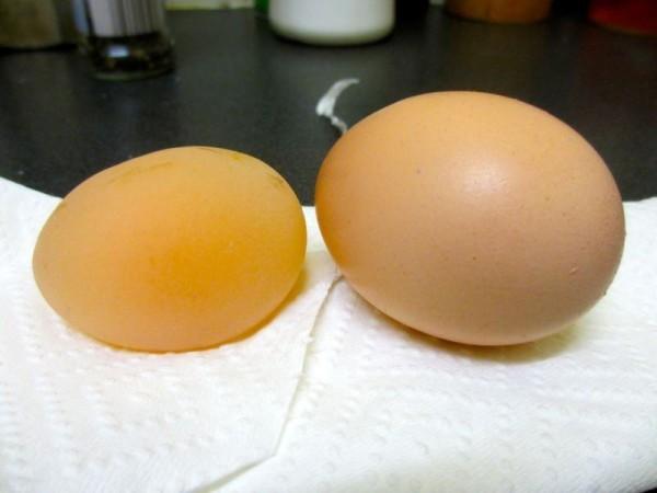 Два яйца: со скорлупой и без