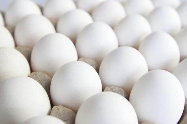 Множество белых куриных яиц