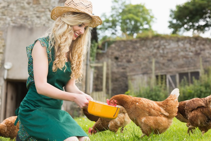 Девушка кормит курицу