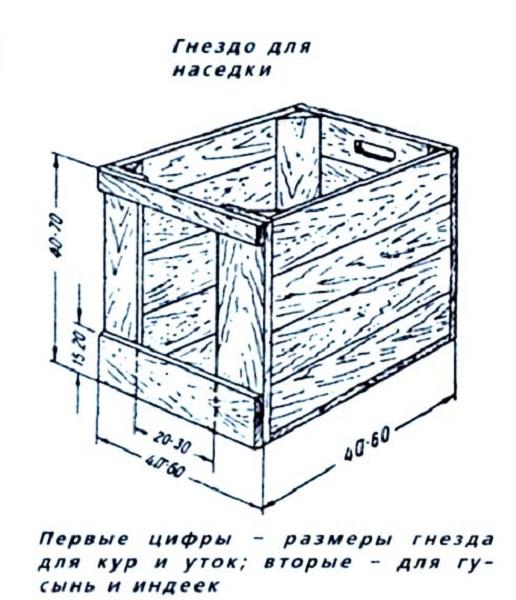Схема гнезда для наседки с размерами