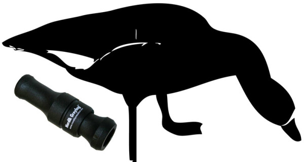 Нарисованный черный гусь и манок