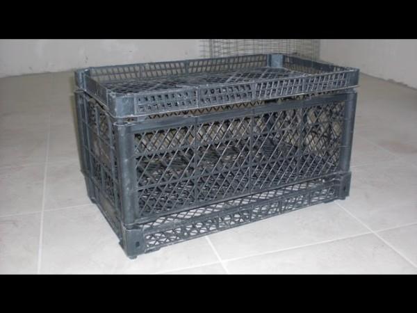 Клетка из пластикового ящика
