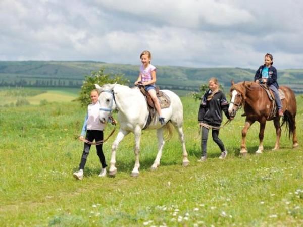 Катание на лошадях на Денисовской ферме