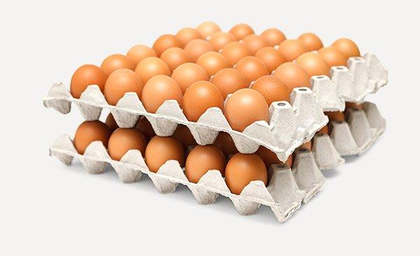 Куриные яйца в бумажном лотке