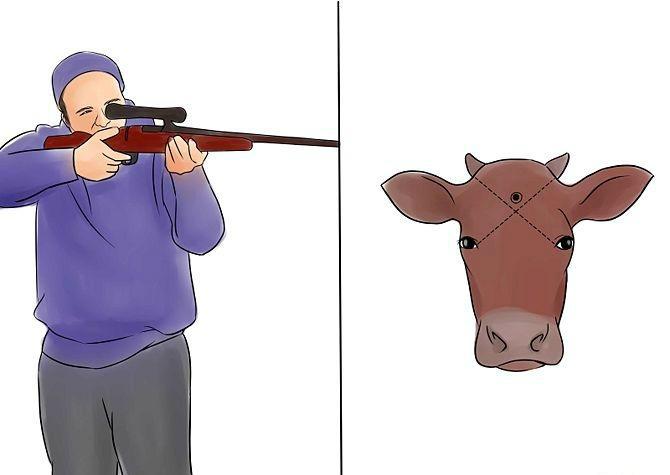 Схема правильного выстрела