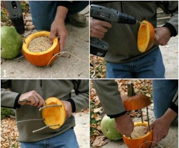 Процесс изготовления кормушки из тыквы