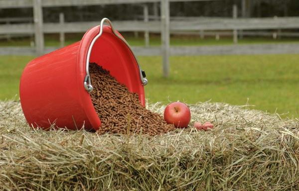 Яблоко и добавка на сене