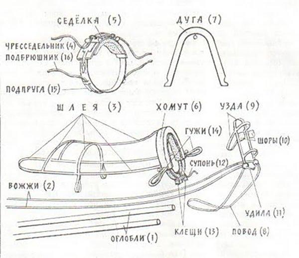 Схема строения дуговой упряжи