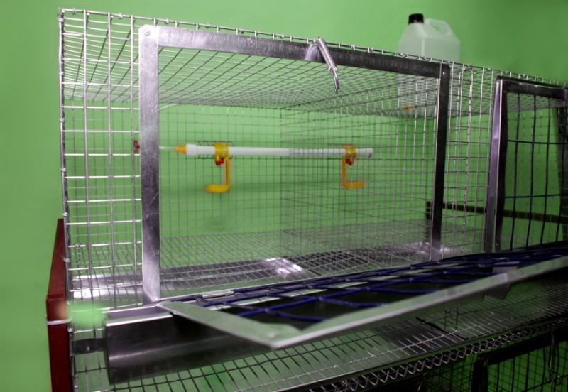 Стандартная клетка для кур-несушек
