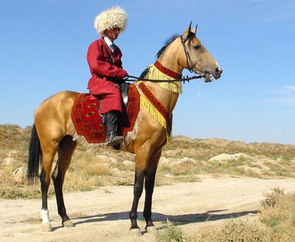 Туркмен на коне