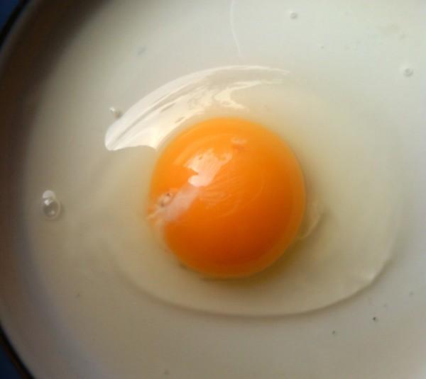 Большой и яркий желток в цесарином яйце