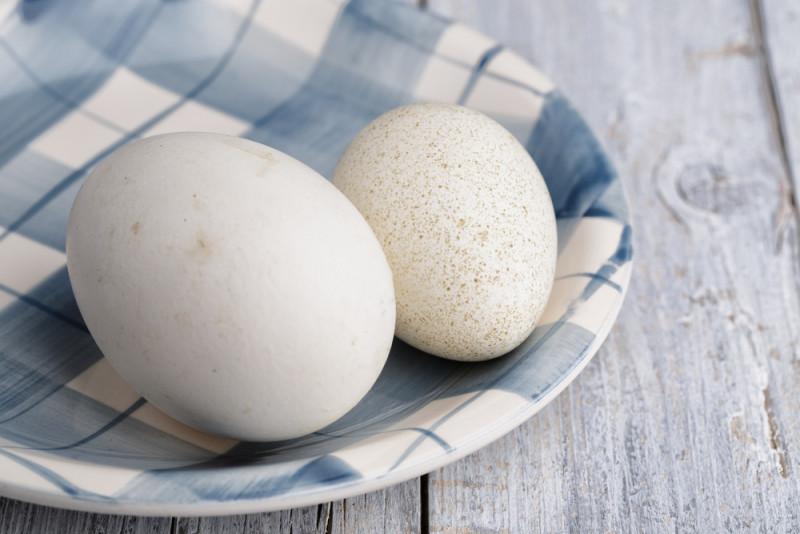 Яйца на тарелке в клетку