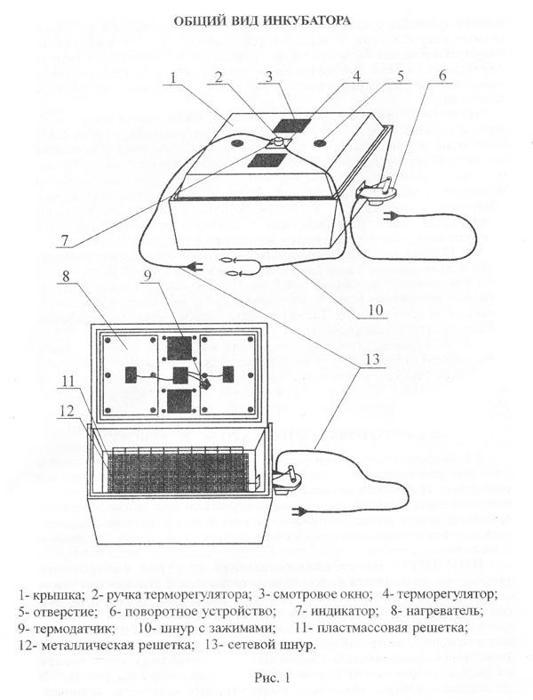 Схема устройства инкубатора